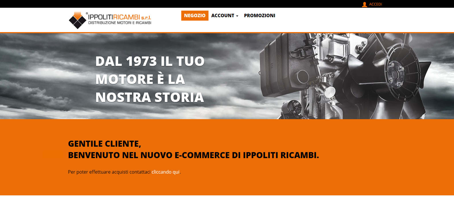 Ippoliti ricambi E-commerce